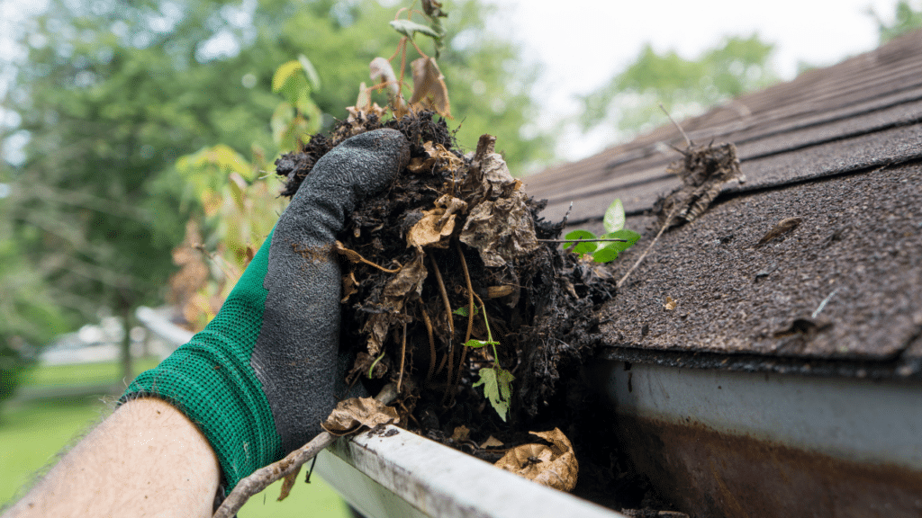 Summer-Home-Maintenance-Tips-Wedgwood-Insurance