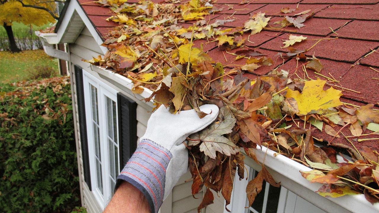fall-home-maintenance-newfoundland-wedgwood-insurance